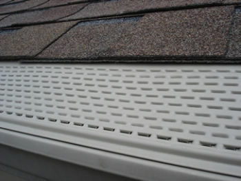 Raintrap Gutter Protection